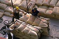 Unloading coffee sacks from a ship
