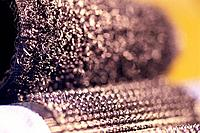 Close up of two velcro strips being pulled apart