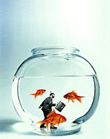 Businessman with Snorkel in Fish Bowl