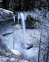 Ice hangs from falls in winter. Silver Falls State Park. Oregon. USA
