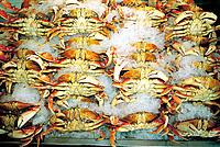 Fresh crabs at market. Seattle. USA