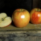 Gala Apples on a Crate (Soft Focus)