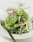 Mixed salad leaves with cucumber, red beet & yoghurt sauce