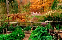 New England Vegetable and Perennial gardenin the autumn