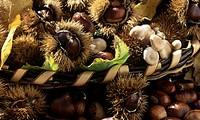 Basket of sweet chestnuts