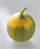 Round courgettes (Rondini variety)