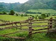 Soto de Agues. Redes National Park. Asturias. Spain