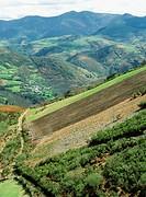 Vilela, Lor river valley, Courel mountains. Lugo province, Spain