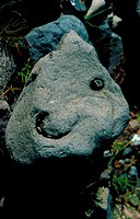 A stone with a face formation in it