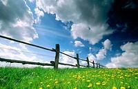 Fence in spring. Baden-Württemberg, Germany
