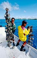 Gauguin´s black pearls farm in Rangiroa Atoll . Tuamotus archipelago. French Polynesia