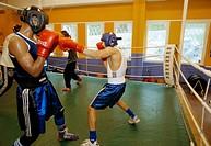 Amateur boxers training in Tensta, Stockholm