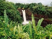 Rainbow Falls. Hilo, Big Island. Hawaii , USA