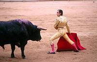 Bullfighting. Barcelona, Spain
