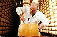 food industry, dairy, production parmesan cheese, parma, emilia romagna, italy