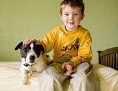 Boy, age 4, siting on bed with his Jack Russell Terrier pet dog