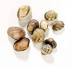 Several clams