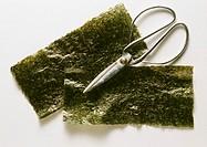 Two Leaves of Wakame Algae