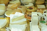 Variety of cheese, elevated view
