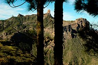 Roque Nublo seen from Degollada de Becerra viewpoint. Cumbres region. Gran Canaria. Canary Islands. Spain