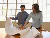 Businesspeople examining blueprints