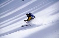Skiing in the Wasatch. Brighton backcounty. Utah. USA.