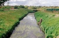 River Lean, Basford, Nottingham,