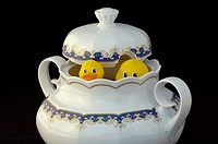 Rubber ducks floating in soup tureen from Limoges