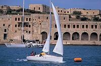 malta, sailing boats near the coast