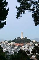 View of Coit Tower, San Francisco. California, USA