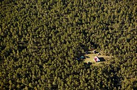 Lonelyness house in the forest, aerial view. Gotland. Sweden.