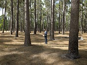 Businessman reading newspaper in forest