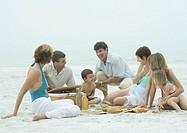 Group having picnic on the beach