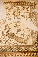 Mosaic. The historic bizantine basilica built in 393 by pilgrims. The prophet Moise grave is supposed to be on top of Mount Nebo (alt.804m). Kingdom o...