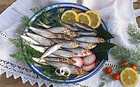 Several sprats on a plate with dill, onions, lemon