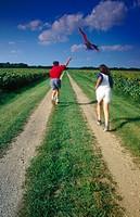 Children flying kite along a sunflower field