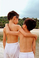Two boys, arm around each other, rear view