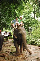 Couple riding elephant, laughing