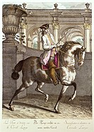 sport, equestrial sport, horse riding, dressage, trot to the right in a wide circle, coloured engraving, ´Neue Reit Schul´, edited by Johann Elias Rid...