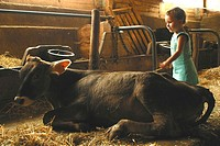 CHILD WITH ANIMAL<BR>Model.<BR>2-year-old girl.
