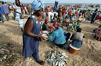 AN AFRICAN SCENE<BR>Photo essay for press only.<BR>Women selling fish, Senegal.