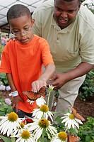 Alabama, Huntsville, Botanical Gardens, Butterfly House, flowers, Black father, son,