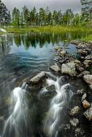 River. Ovre Pasvik Natural Park, Norway.
