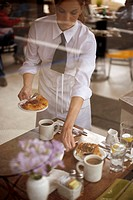 Waitress Bussing Table