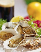 Oysters in Half Shells
