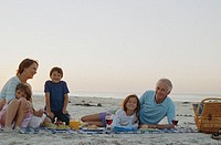 Family Having Picnic at Beach
