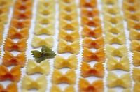 Noodles, Farfalle, three-colored, uncooked,    Series, pasta, noodle kind, pasta, Italian, butterfly noodles, butterfly form, bow form, tastes, differ...