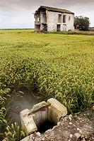 Abandoned house next to the rice fields. P.N. Albufera de Valencia, Comunidad Valenciana, Spain..