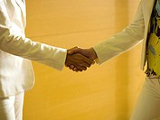 Two business women shaking hands, close-up, mid section