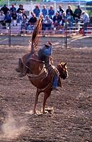 Canada, Saskatchewan, the Badlands, country rodeo at Shaunavon